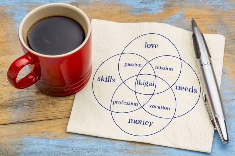 Guide de l'ikigai