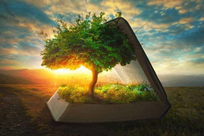 Livre qui ouvre sur un Arbre de vie