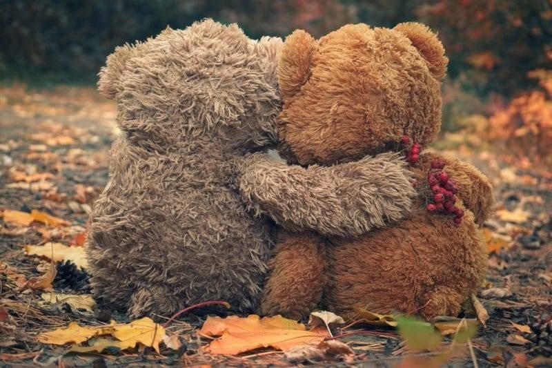 Deux ours en peluche se serrant les uns les autres et en regardant la forêt d'automne