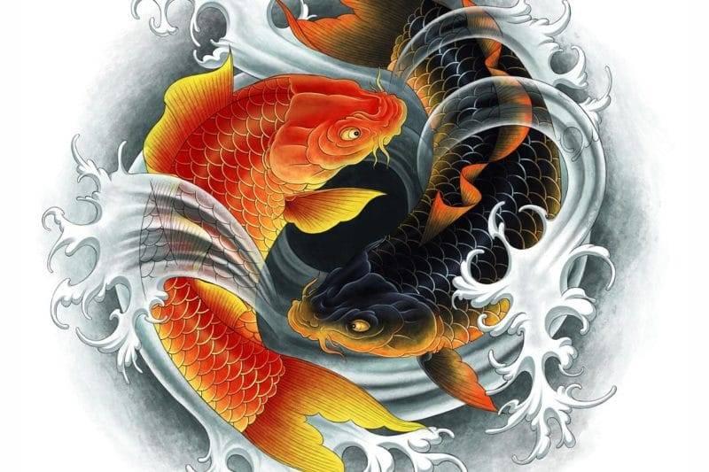 Deux Koi rouges et noirs en Yin-Yang