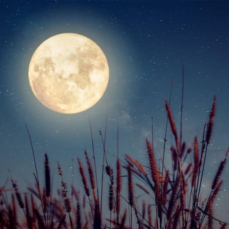 Lampe lune de chevet https://www.chakras-shop.com
