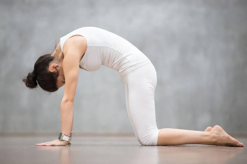 Femme en position du chat en yoga