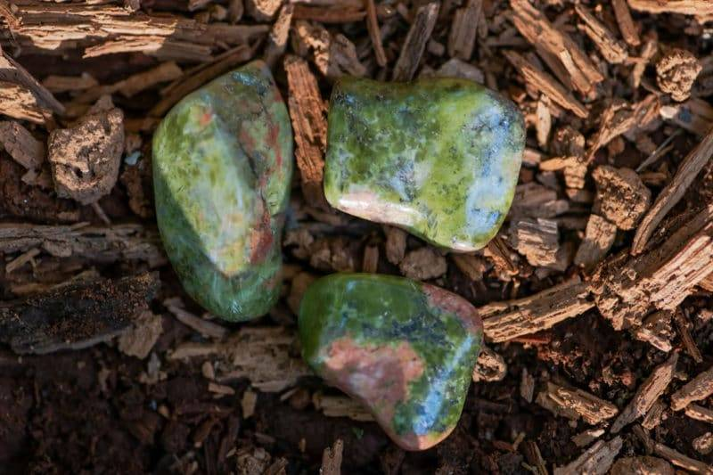 3 pierres polies d'Unakite sur morceaux de bois