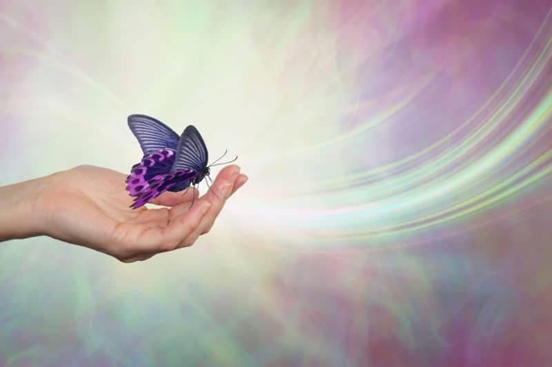 Papillon dans une main style abstrait