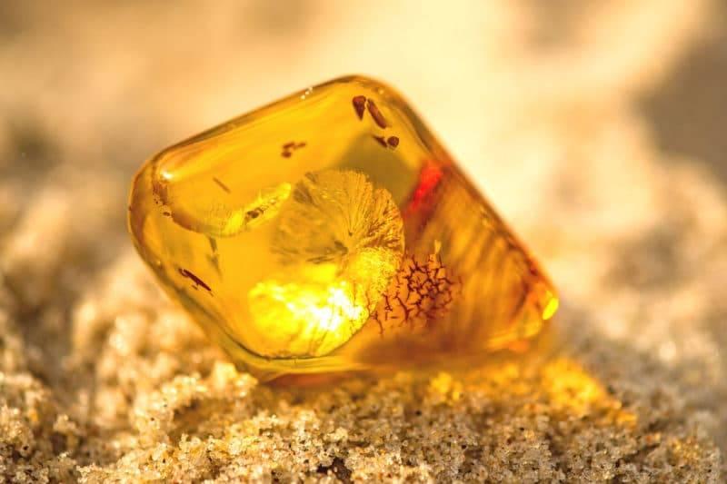 Pierre d'ambre sur la plage