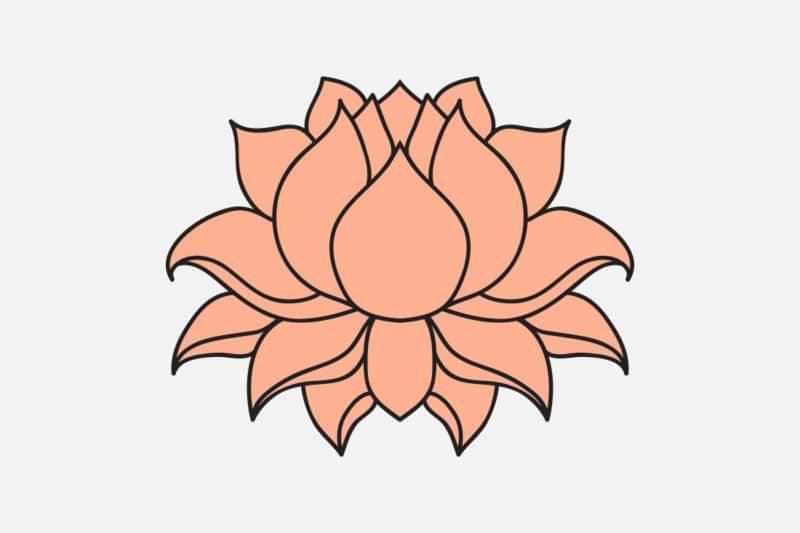 Fleur de lotus symbole bouddhiste