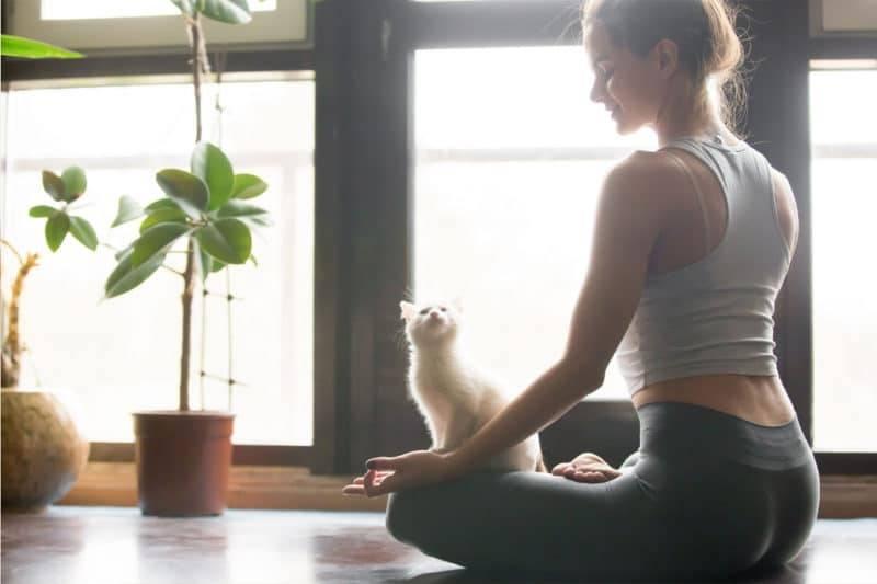 Jeune femme qui médite avec son chat